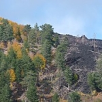 """Luci e colori dell'autunno a Piano Provenzana di Linguaglossa sull'Etna (2.000 metri) • <a style=""""font-size:0.8em;"""" href=""""http://www.flickr.com/photos/43732391@N00/15573066668/"""" target=""""_blank"""">View on Flickr</a>"""