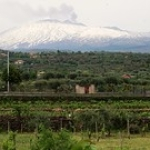 "Le Vigne e L'Etna / The Vineyard in the Etna / CT / Sicilia. • <a style=""font-size:0.8em;"" href=""http://www.flickr.com/photos/85344536@N05/15050706317/"" target=""_blank"">View on Flickr</a>"