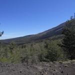 "Giro Etna in MTB • <a style=""font-size:0.8em;"" href=""http://www.flickr.com/photos/92853686@N04/46910581875/"" target=""_blank"">View on Flickr</a>"