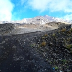 """Lungo i sentieri dell'etna • <a style=""""font-size:0.8em;"""" href=""""http://www.flickr.com/photos/125245895@N08/15668406046/"""" target=""""_blank"""">View on Flickr</a>"""
