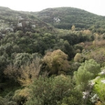 """Gita in territorio di Canicattini Bagni (SR) • <a style=""""font-size:0.8em;"""" href=""""http://www.flickr.com/photos/92853686@N04/15916779715/"""" target=""""_blank"""">View on Flickr</a>"""