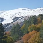 """Luci e colori dell'autunno a Piano Provenzana di Linguaglossa sull'Etna (2.000 metri) • <a style=""""font-size:0.8em;"""" href=""""http://www.flickr.com/photos/43732391@N00/15139069343/"""" target=""""_blank"""">View on Flickr</a>"""