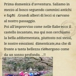 """il racconto di Rosamaria • <a style=""""font-size:0.8em;"""" href=""""http://www.flickr.com/photos/92853686@N04/16049411421/"""" target=""""_blank"""">View on Flickr</a>"""